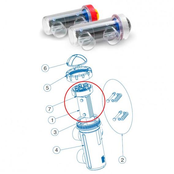 Electrodo célula Idegis Tecno '12