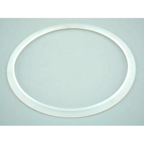 Junta silicona proyector extraplano AstralPool 4403010102