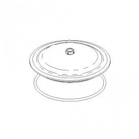 Tapa transparente y junta filtro Corona AstralPool 4404090102