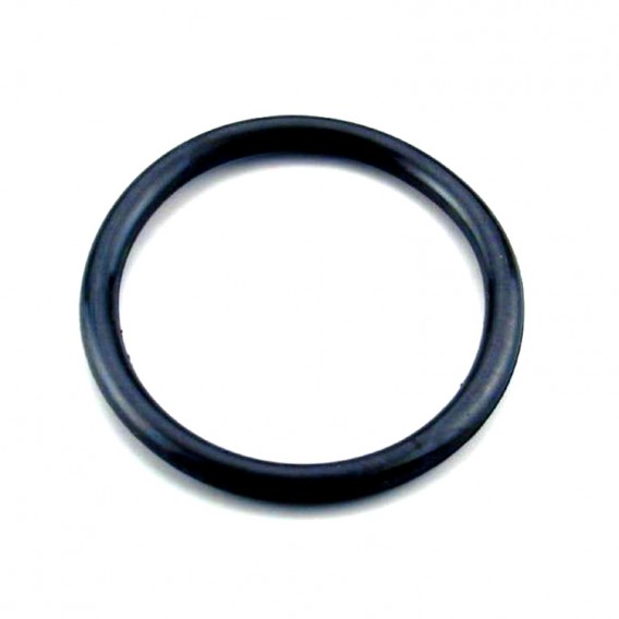 Junta tórica foco proyector AstralPool 4403010304