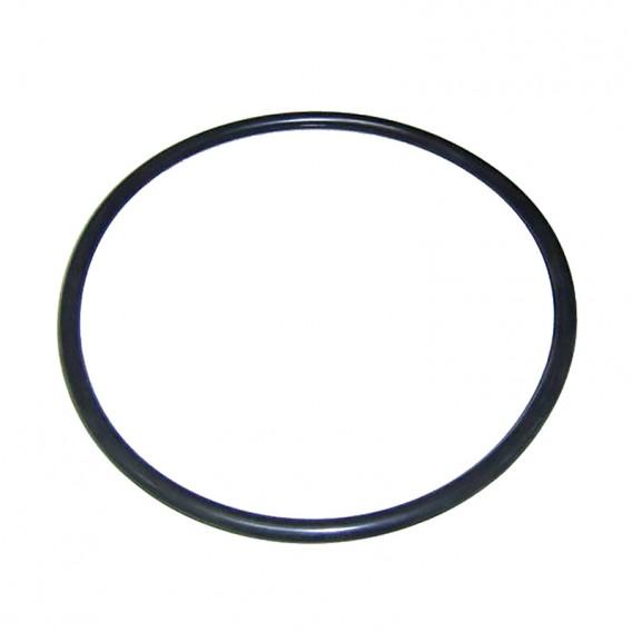 Junta tórica dosificador Compacto AstralPool 4408010409