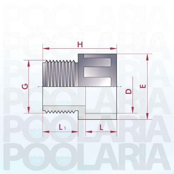 Terminal PVC para encolar y roscar macho