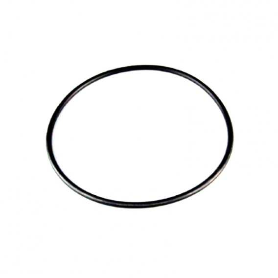 Junta tórica filtro cartucho AstralPool 4404130106
