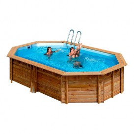 Piscinas desmontables poolaria for Escalera piscina bricodepot